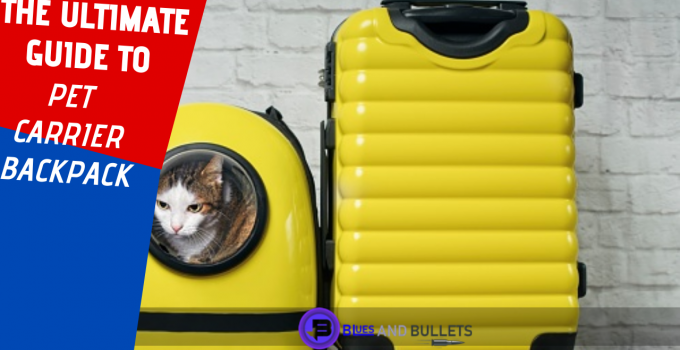 The ultimate guide to pet carrier backpack