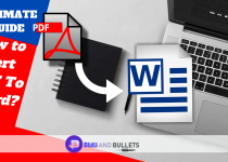 how to insert pdf to word